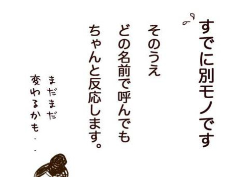 25no15_3